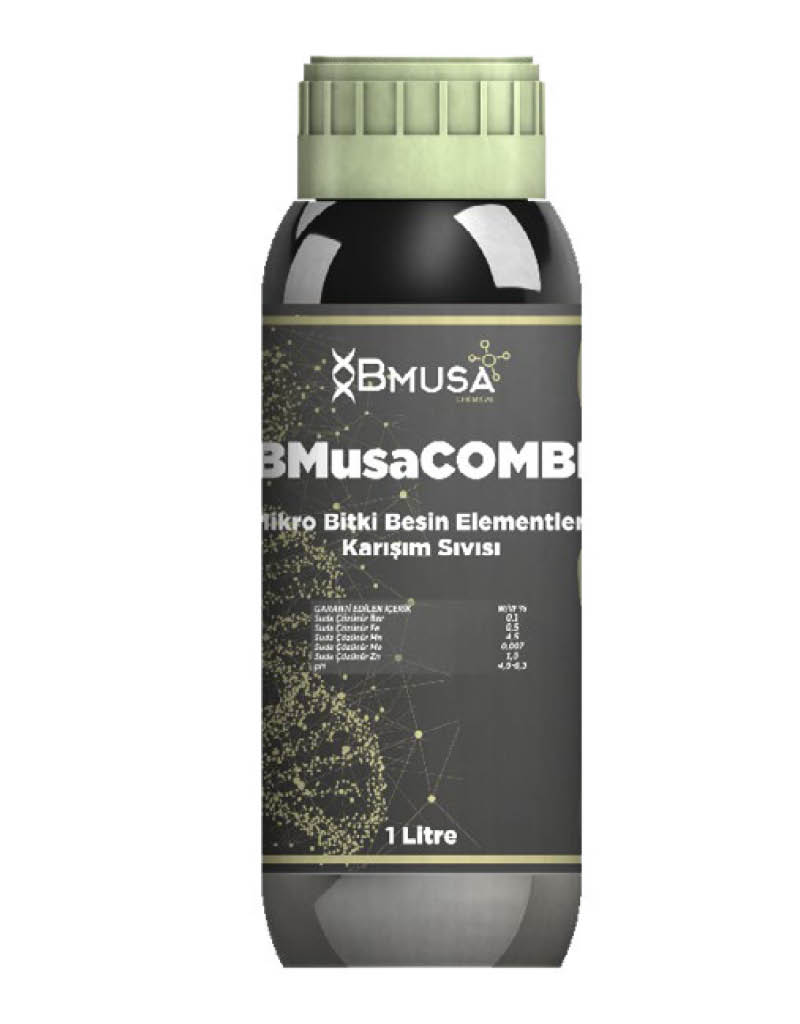 BMusa Combi