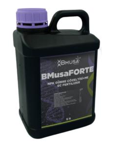 BMusa Forte