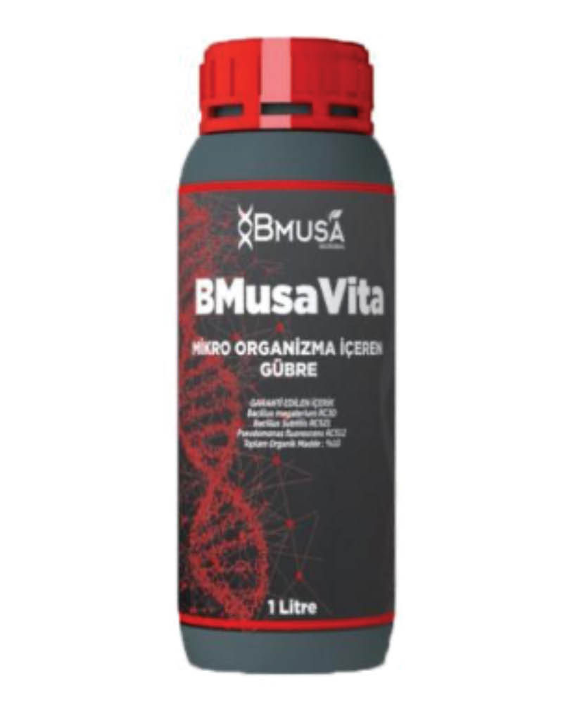 BMusa Vita